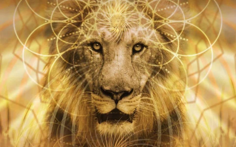 Lions gate 888
