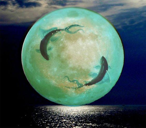 Lua Cheia Peixes