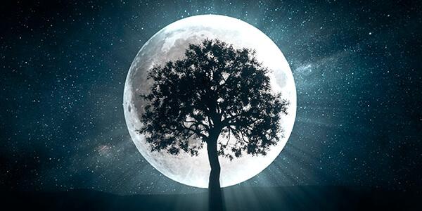 Lua da Benção