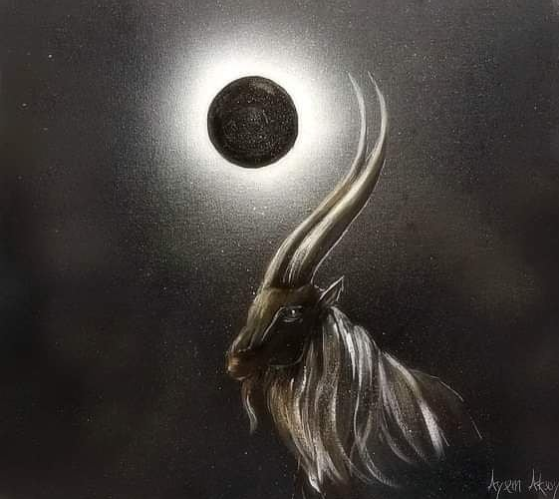 lua nova capricornio